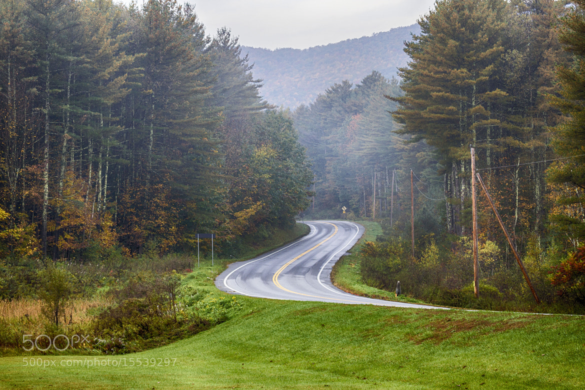 Photograph Curved Road by Sonny Hamauchi on 500px