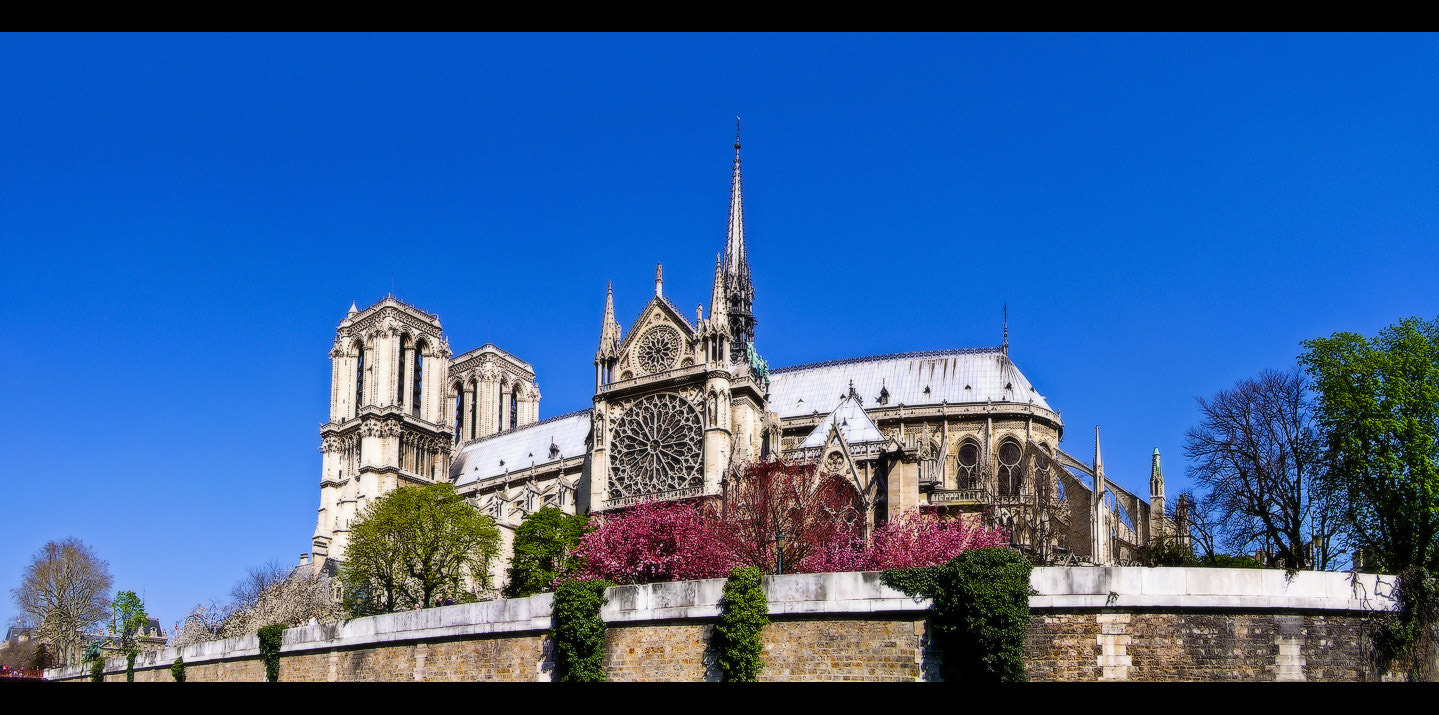Photograph Notre Dame de Paris, view from Seine by Yurii Pidopryhora on 500px