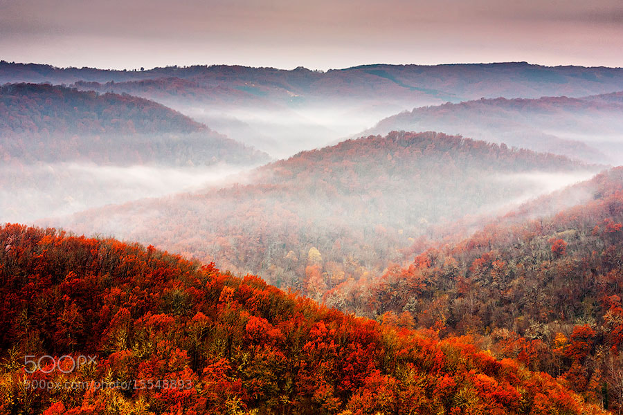 Photograph Autumn Fogs by Evgeni Dinev on 500px