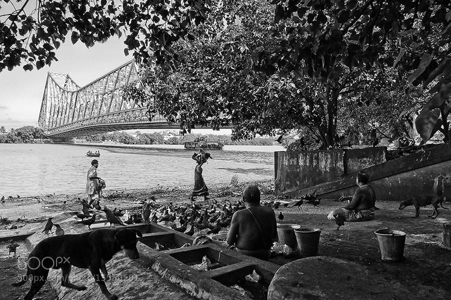 Photograph Life under Howrah bridge by Saumalya Ghosh on 500px
