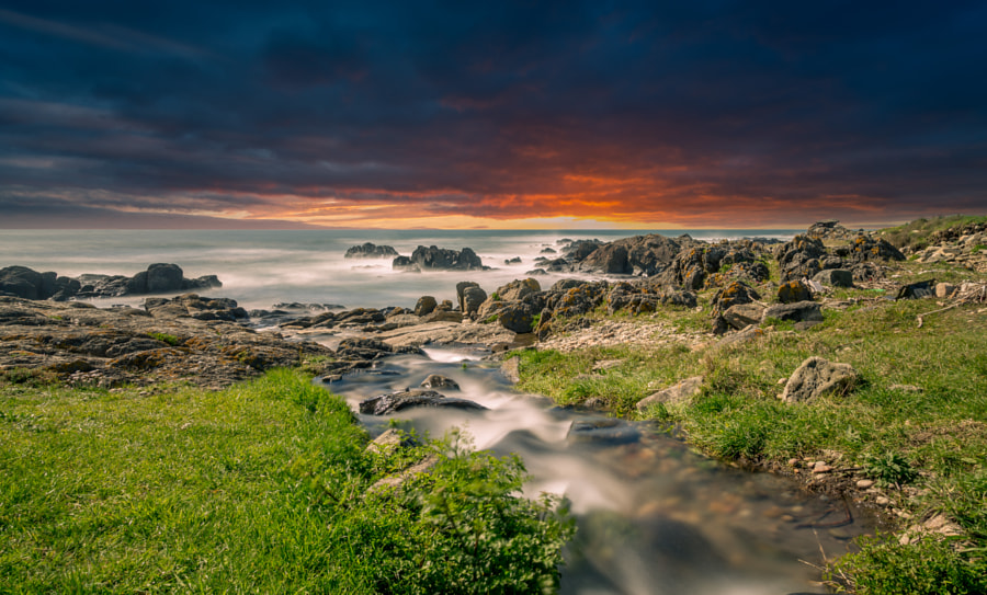 Sunrise over the Creek by Paulo Costa