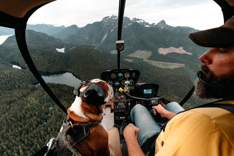 Flying with Mr Bentley the Dog by Rishad Daroowala on 500px.com