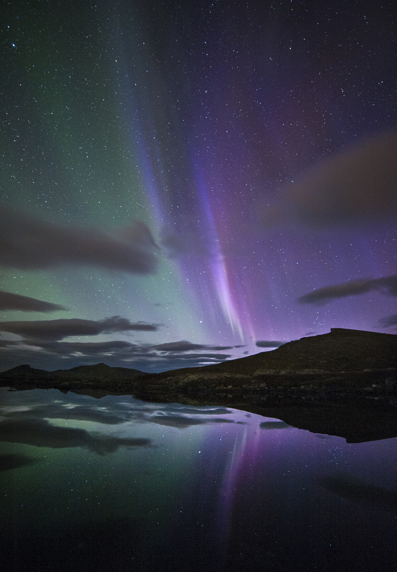 Photograph Aurora light show#1 by Truls Christian Olsen on 500px