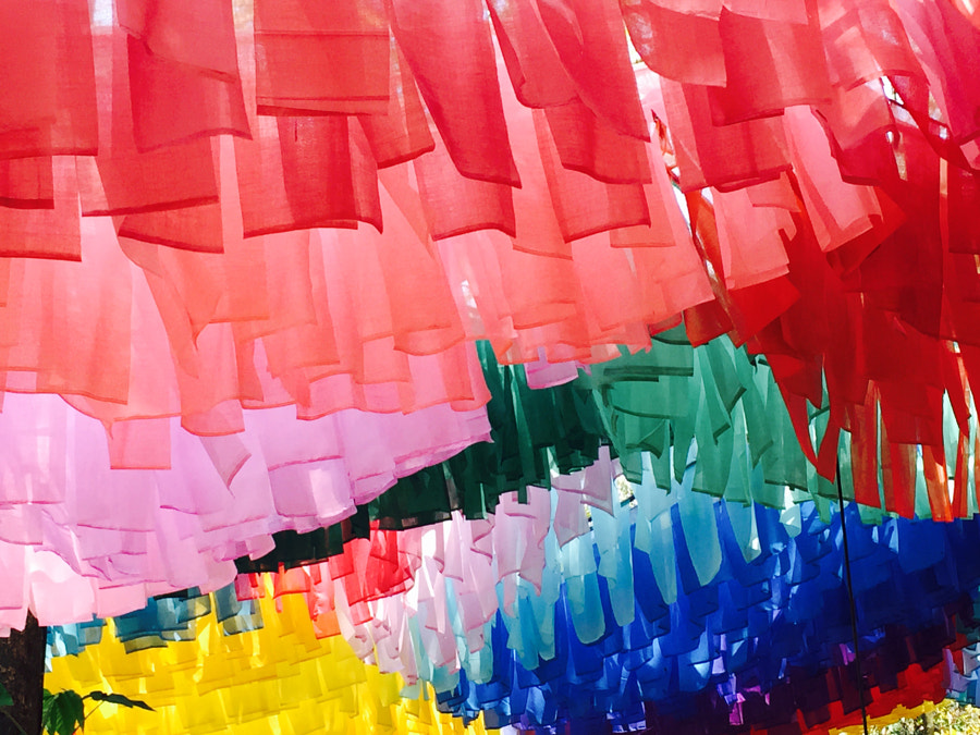 Colors by Nishant Amin on 500px.com