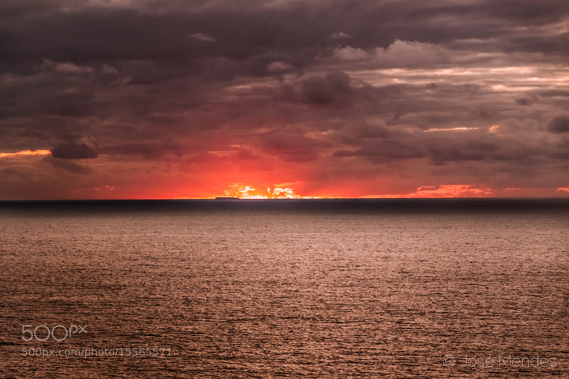 Photograph Fire by José Mendes on 500px