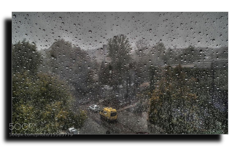 Photograph The Rain by Göksel Tanirgan on 500px