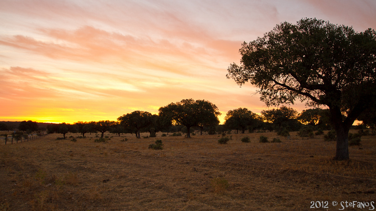 Photograph Extremadura sunset by Stefano Saporito on 500px