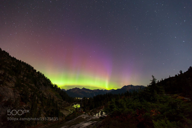 Photograph Purple Aurora by Joel Schat on 500px