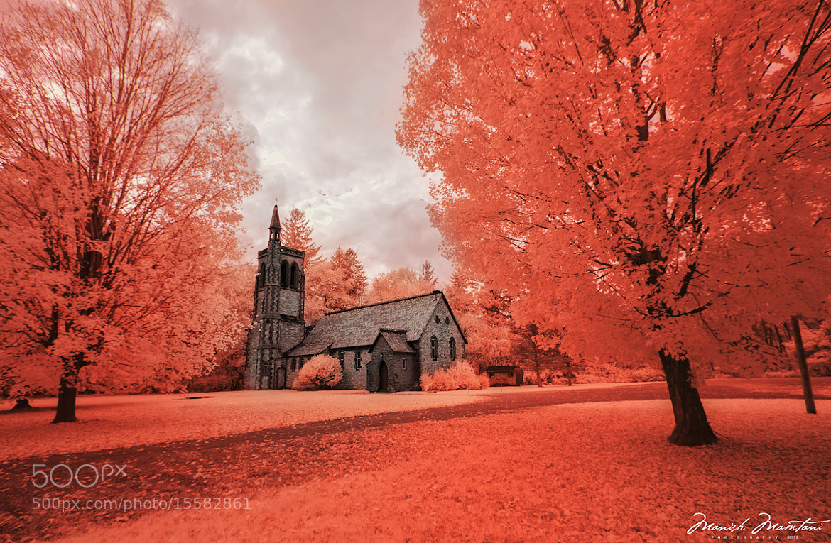 Photograph Fall 2012 - Infrared by Manish Mamtani on 500px