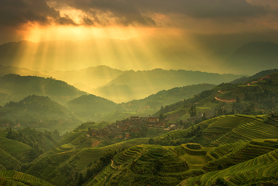 Photograph Ray of Light in Paddy terrace by Jose Hamra on 500px