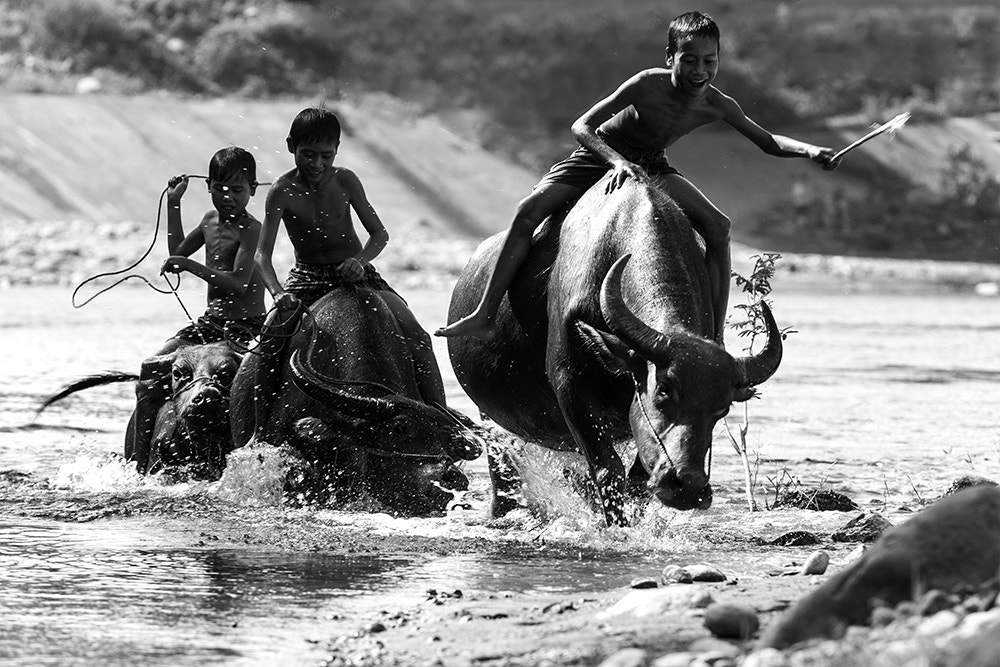 Photograph Happy summer days by Hai Thinh on 500px