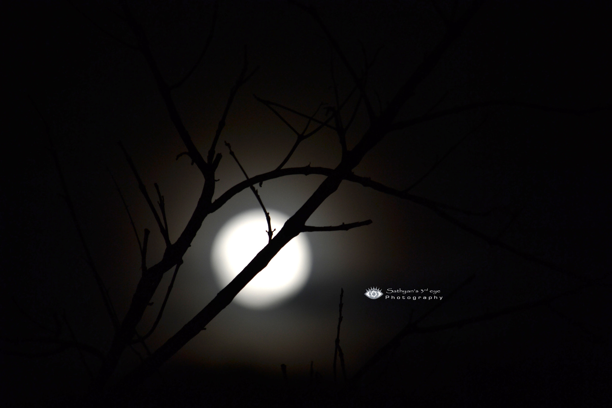 Photograph Silhoutte - Moon by Sathya S R on 500px