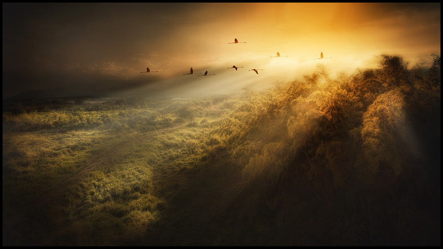 Andes by jose arley agudelo