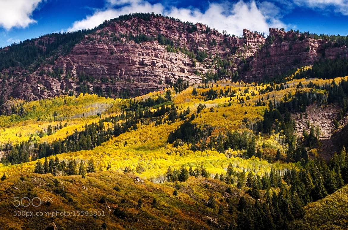 Photograph Red Rocks and Yellow Aspens by Nae Chantaravisoot on 500px
