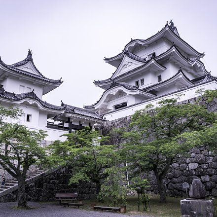 Castle of Ninjas in Iga, Japan