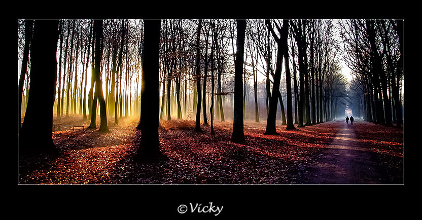 Photograph warm and cold light by Vicky Dens on 500px