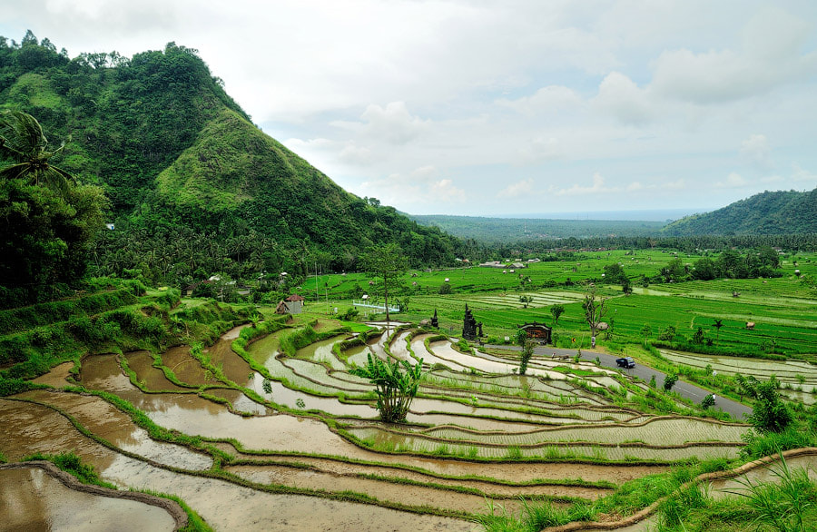 Photograph Rice paddy terraces on the East cost of Bali by Vitaly Taysaev on 500px