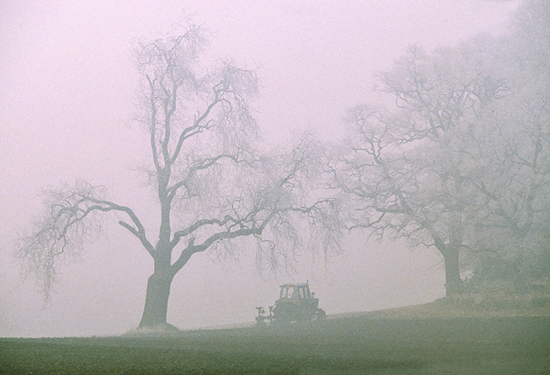 Photograph TRACTOR IN WINTER MIST by COLIN MOLYNEUX on 500px