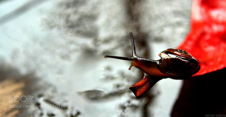 Photograph On the edge by ketan vaidya on 500px
