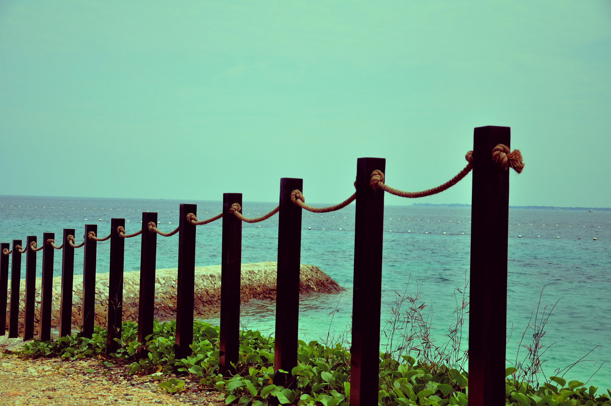 Photograph The Fence.. by Karn Badjatia on 500px