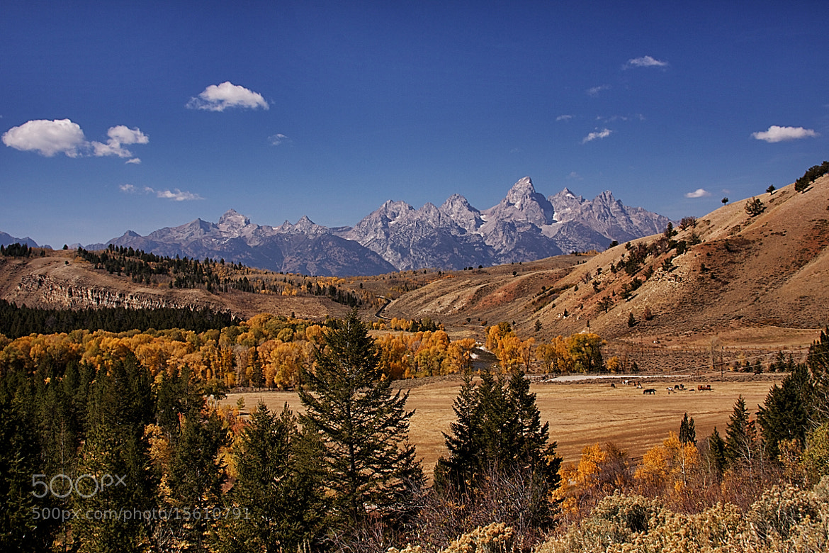 Photograph Fall in the Tetons by Bill D Bell on 500px