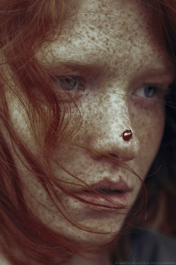 Leonore and the ladybug by Marta Bevacqua