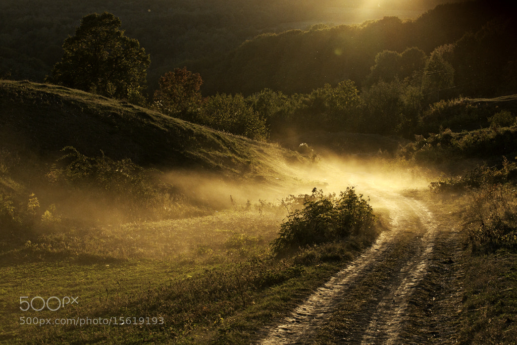 Photograph Lux.10 by Elena Simona Craciun on 500px