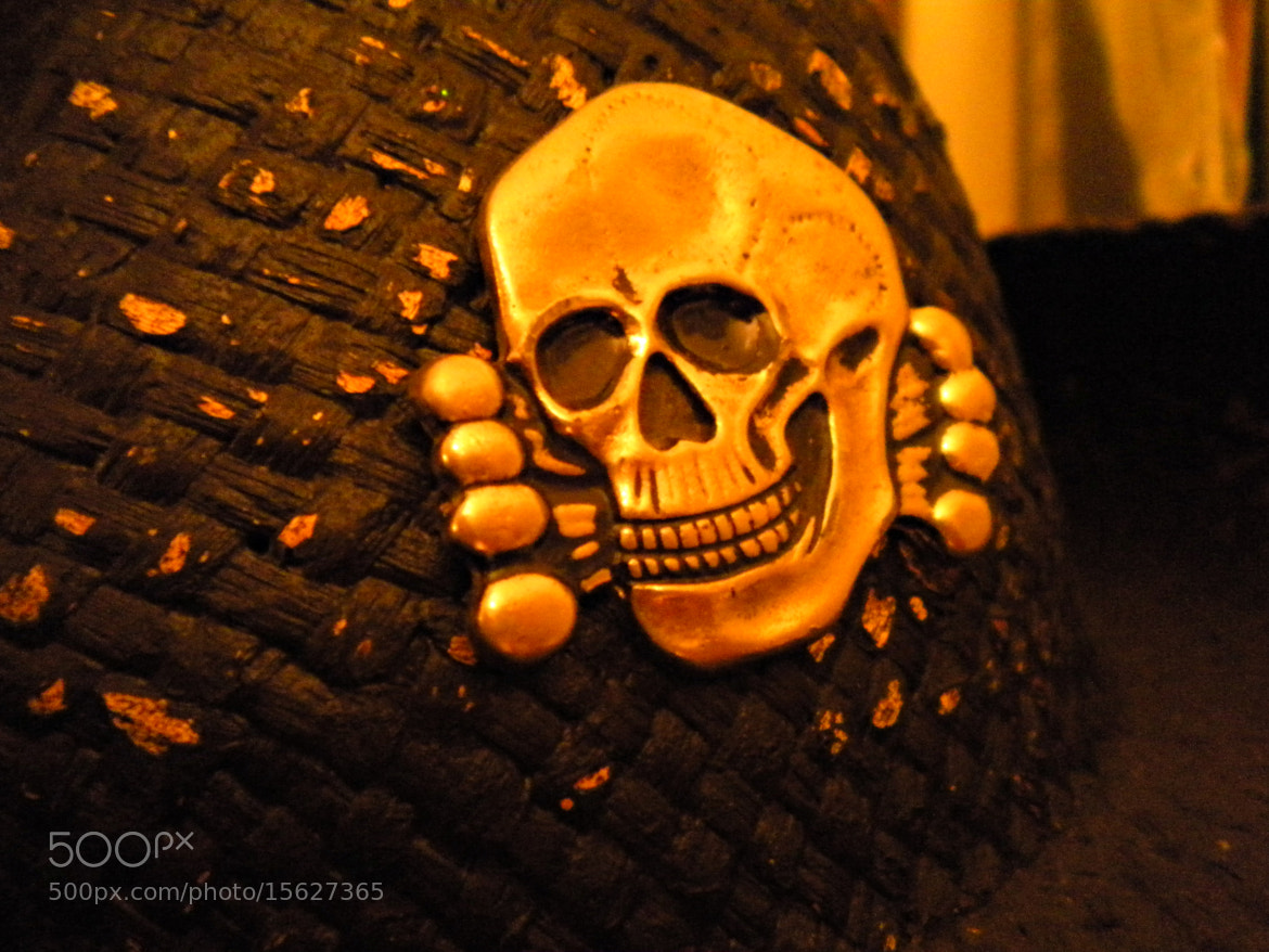 Photograph Death's Head by S. Vargr on 500px