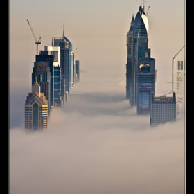 The Fog - Sheikh Zayed Road by Shiva Menon (shivamenon)) on 500px.com