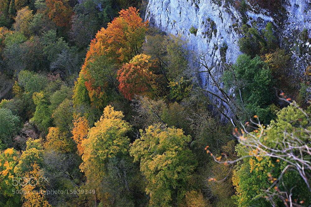 Photograph Herbstliche Aussicht by SuSi MarX on 500px