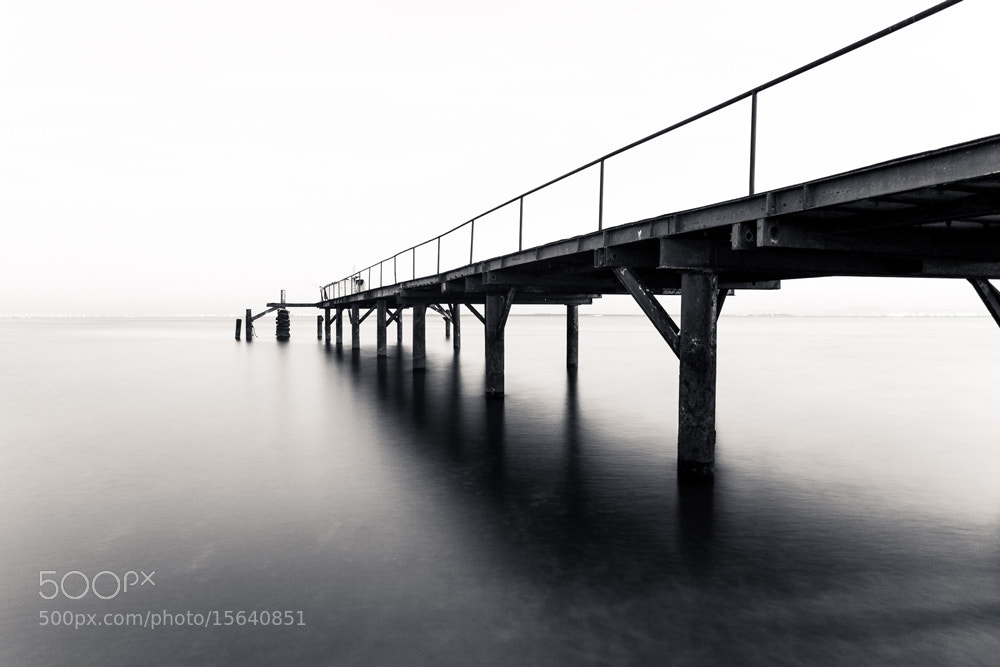 Photograph Quiet River by Marco Gaspar on 500px