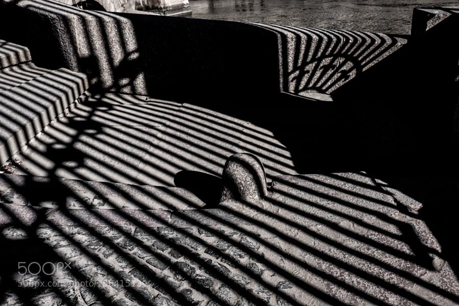 The shadow of the fence of the Summer garden (1)