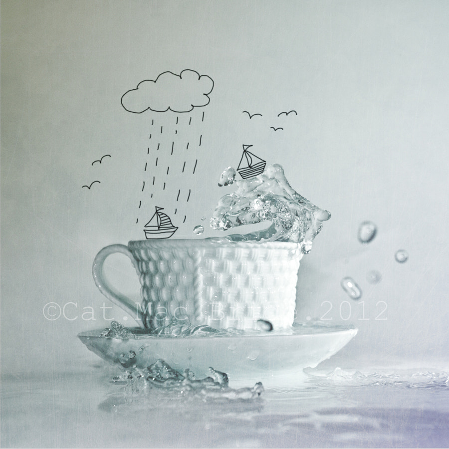 Photograph Storm in a teacup :) by Catherine MacBride on 500px