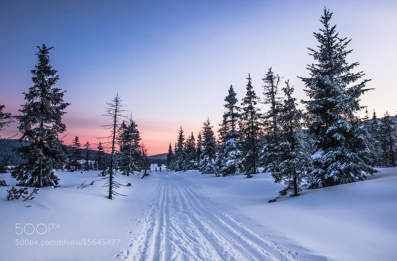 Photograph Jizera Mountains, Poland by Piotr Halka on 500px