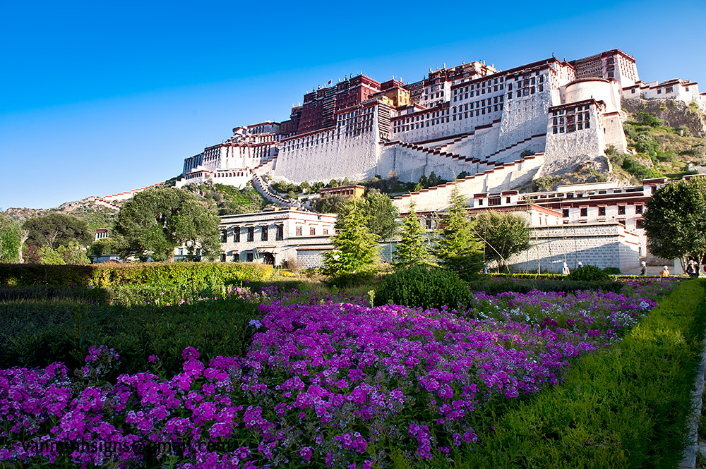 Photograph The Potala Palace by TUAN VAN on 500px