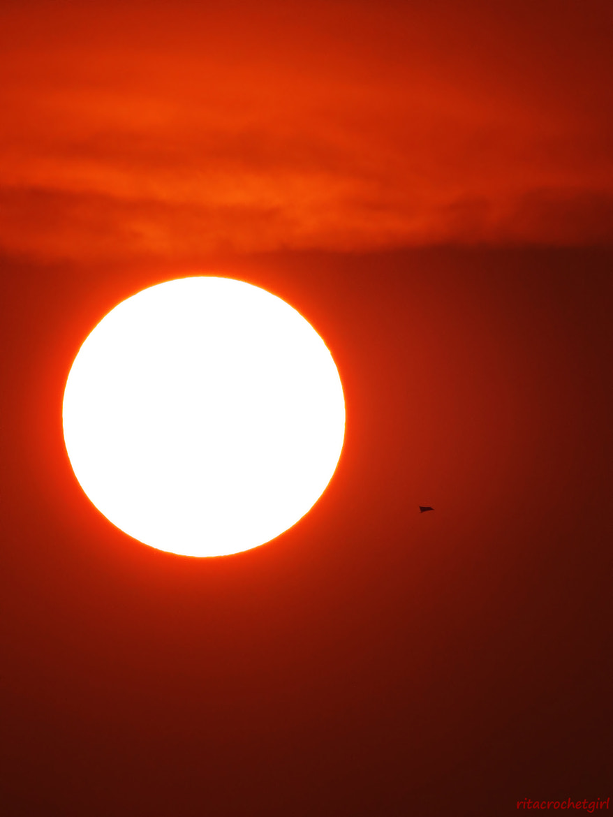Photograph Giant Sun and a Minuscule Kite by Rita Sari Dewi on 500px