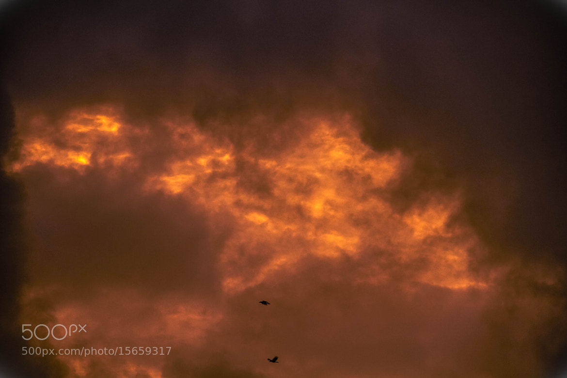 Photograph Burning Sky by Sudeep Devkota on 500px