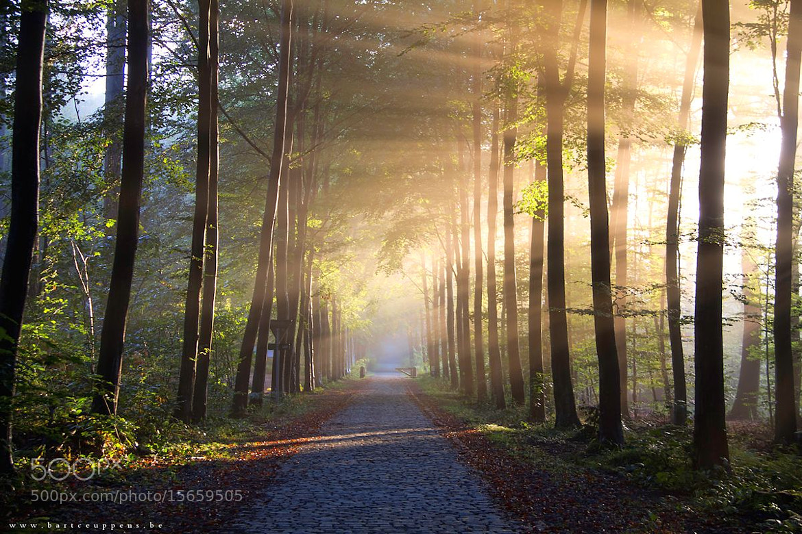 Photograph autumn is just around the corner 5 by Bart Ceuppens on 500px