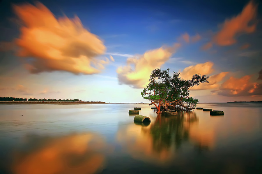 Photograph  Standing Still by Agoes Antara on 500px