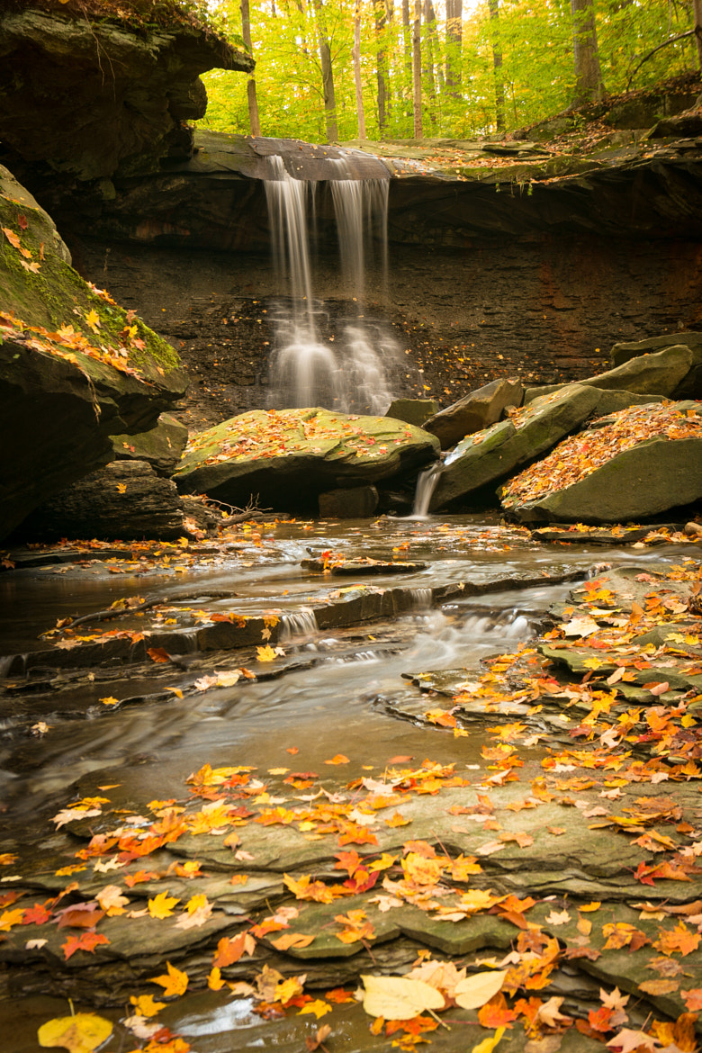 Photograph Blue Hen Falls by Scott T.  Morrison on 500px
