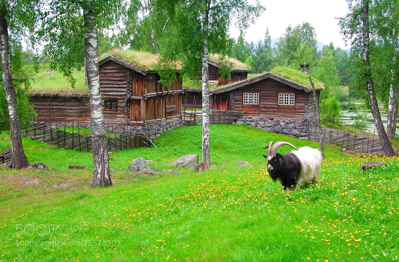 Photograph Maihaugen, Lillehammer by Terje Thorsen on 500px