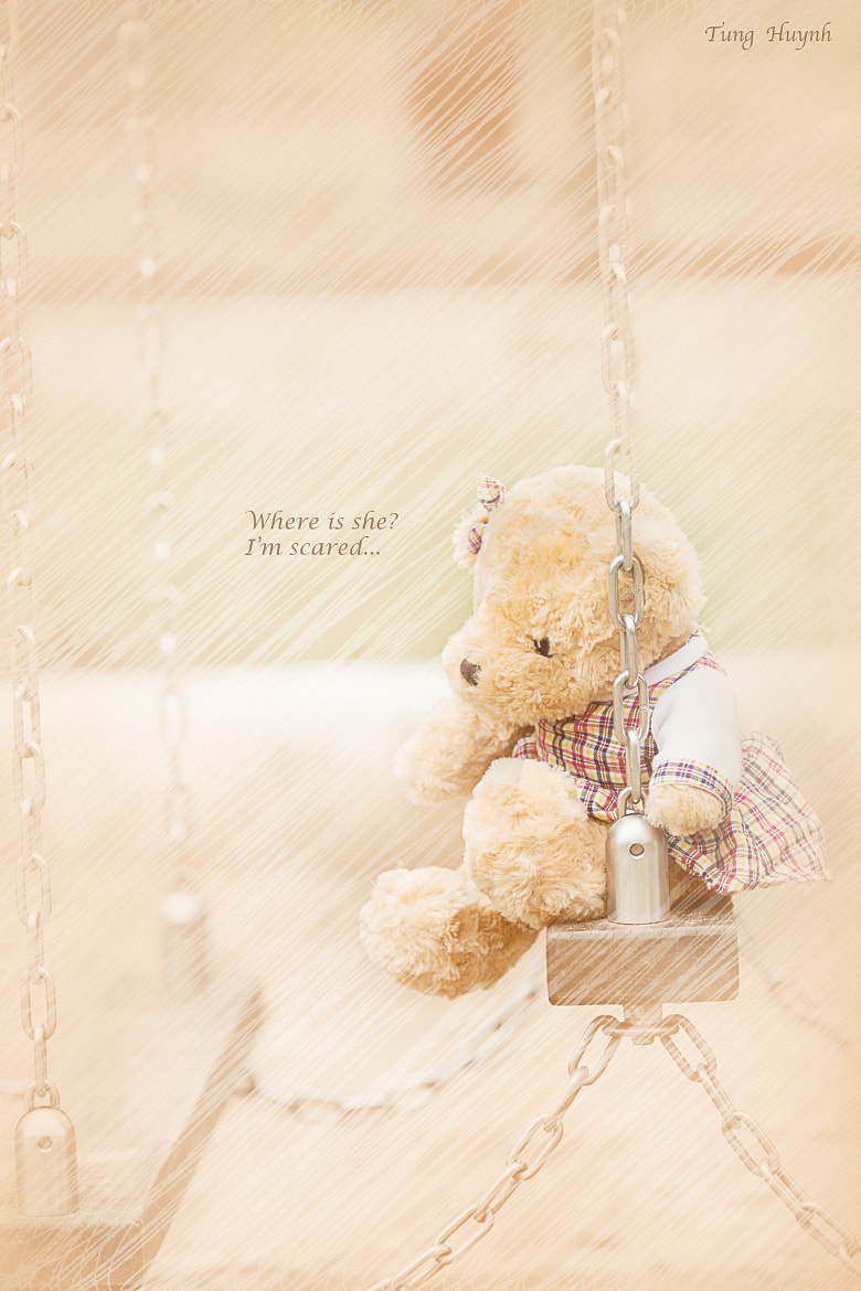 Photograph Lost Teddy by Tung Huynh on 500px