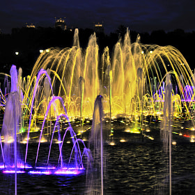 night fountain by Lyudmila Izmaylova (lyutik966)) on 500px.com