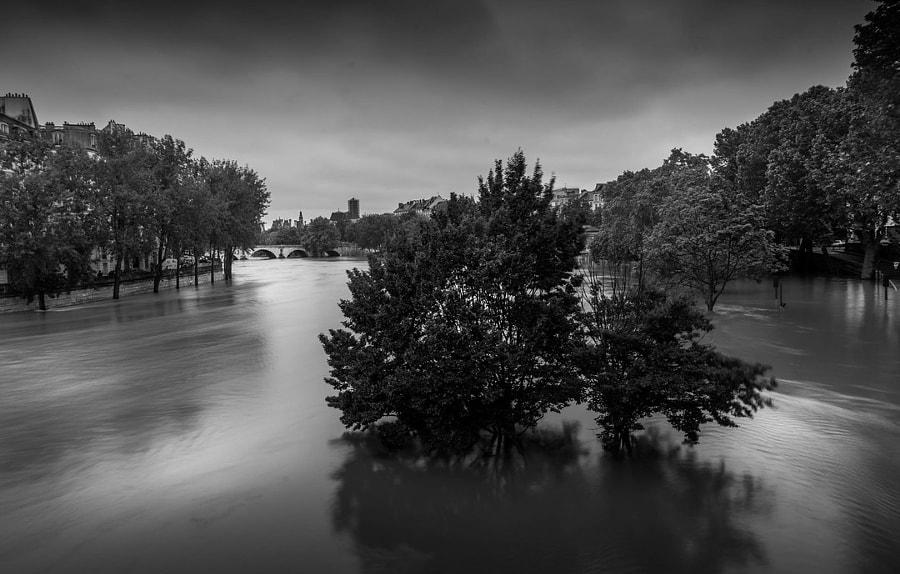 Paris under water!