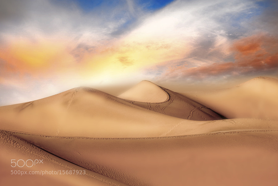 Photograph Desert Dunes by Dana McMullen's Imageroom on 500px