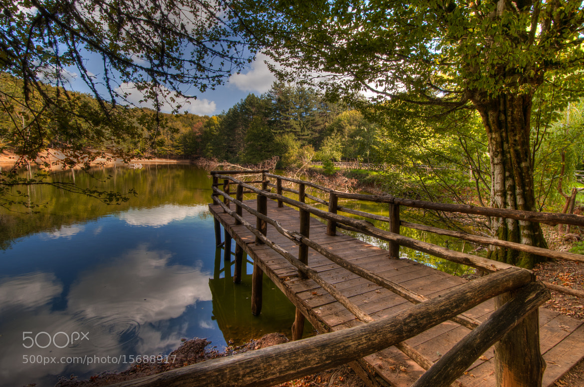 Photograph Pier over a lake in Foresta Umbra by Joe Borg on 500px