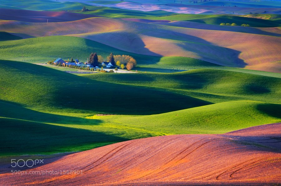 Photograph Palouse Sunrise by Jerry Patterson on 500px