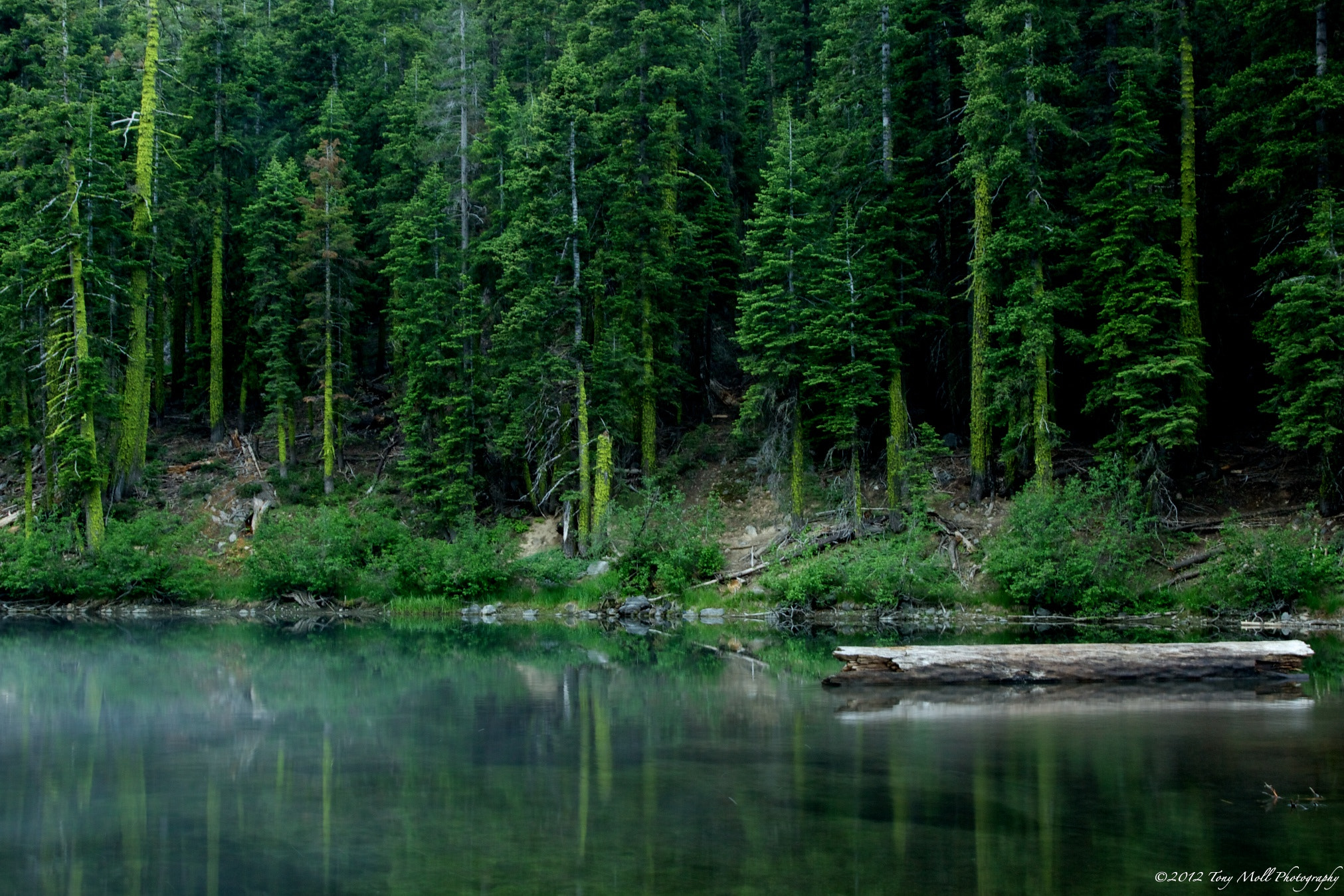 Photograph Little Truckee by Tony Moll on 500px