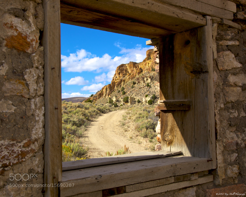 Photograph Wild Window by Tony Moll on 500px