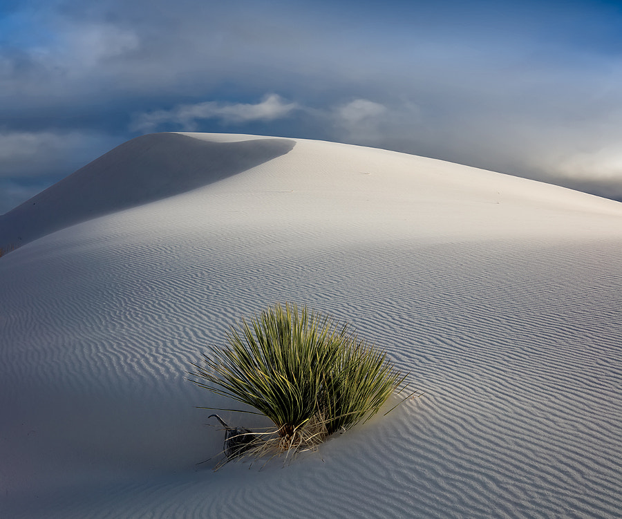 White Sands NM by Cecil  Whitt on 500px.com